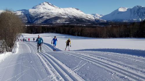 ski2 - Kopi